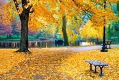 Comienzo del otoño meteorológico 2016