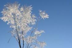 Comienzo del invierno meteorológico 2021