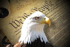 Día de la Constitución 2019